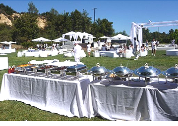 Luxurious outdoor spread provided              by Metro City Wings Catering at P. Diddy's All White 4th of July event.
